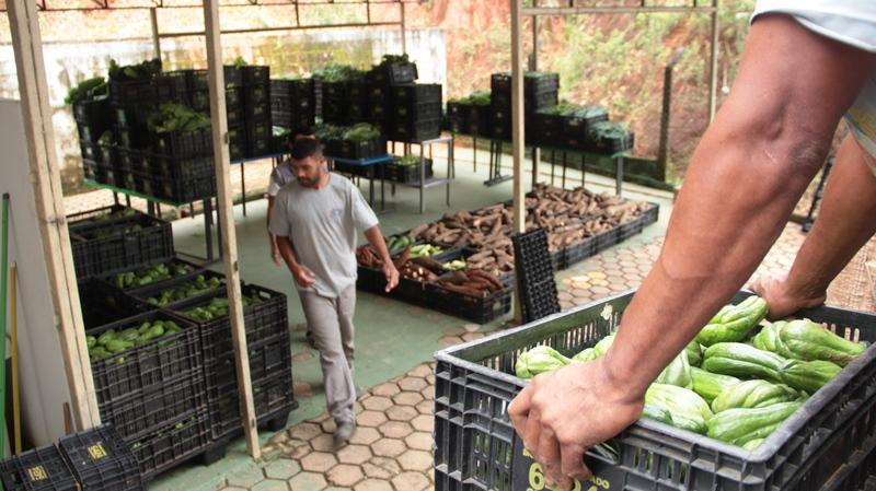 Banco de Alimentos de Fabriciano entrega cestas básicas e amplia a distribuição de hortaliças para famílias carentes